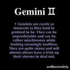Gemini@lvanawesome
