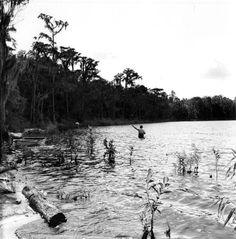 Fly fishing in Wakulla County. | Florida Memory