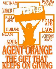 Agent Orange Legacy: (Beyond wrong and outrage)