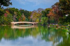 Bow Bridge Central Park | Bow Bridge Central Park, NYC, NY – Click to Enlarge/Purchase