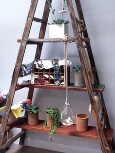 An old trestle ladder used as a shelf.