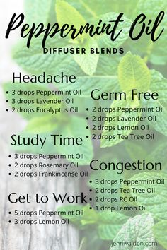 Essential Oils Guide, Doterra Essential Oils, Peppermint Essential Oils, Doterra Blends, Young Living Oils, Young Living Essential Oils, Essential Oil Combinations, Aromatherapy Oils, Aromatherapy Recipes