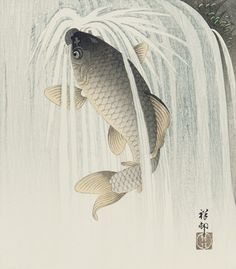 Carp ascending a waterfall  ca. 1926    Ohara Koson (Shoson) , (Japanese, 1877 - 1945)  Taisho or Showa era     Woodblock print; ink and color on paper  H: 27.6 W: 24.0 cm   Japan