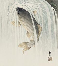 Carp ascending a waterfall ca. 1926 Ohara Koson (Shoson) , (Japanese, 1877 - 1945) Taisho or Showa era Woodblock print; ink and color on paper H: 27.6 W: 24.0 cm Japan