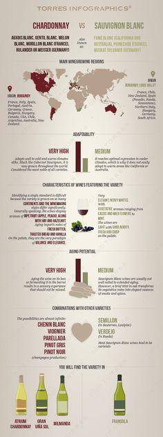 White Wine Grape Variety: Chardonnay vs. Sauvignon blanc   Club Torres #Comparison#
