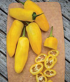 Pepper, Sweet, Lemon Dream - Sweet Peppers at Burpee.com