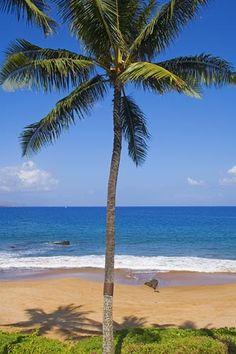 Poolenalena Beach, Makena, Maui, Hawaii