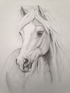 beautiful drawing:                                                                                                                                                                                 More