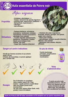 Helpful Aromatherapy Ayurveda Techniques For Wisdom quotes Essential Oils Guide, Young Living Essential Oils, Doterra, Accupuncture, Beauty Games, Diy Lotion, Medicinal Herbs, Tea Tree, Ayurveda