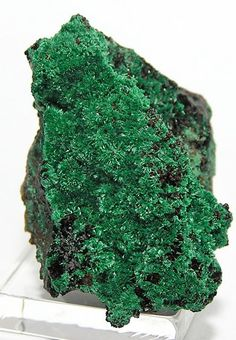 Dark Green Primary Malachite Crystals  Mineral by FenderMinerals, $8.00