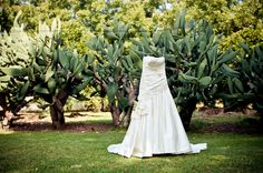 TINK has shot more than 100 weddings over the last few years and this gallery displays some of the images created over that time Real Weddings, Wedding Dresses, Photography, Image, Bride Dresses, Bridal Gowns, Photograph, Weeding Dresses, Fotografie