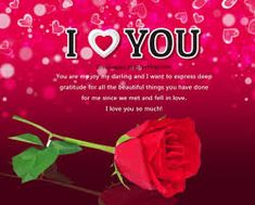 Image result for flowers and roses images
