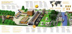Como funciona a indústria brasileira de suco de laranja
