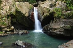 A refreshing waterfall in El Yunque National Forest