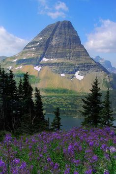 Glacier National Park, Montana by kevinmcneal