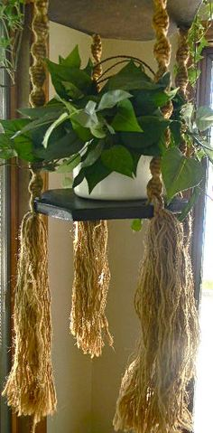 Image of a found macrame plant hanger from the 1970s. Priced at $60, seller states the wood is warped but plant will sit straight. No measurements given.