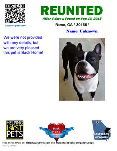 Helping Lost Pets | Dog - Boston Terrier - Reunited