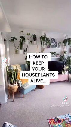 Inside Plants, Cool Plants, House Plants Decor, Plant Decor, Indoor Garden, Indoor Plants, Household Plants, Growing Plants Indoors, Pothos Plant