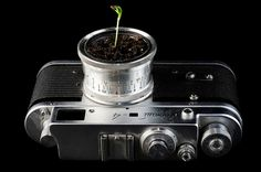 5. Starter Camera