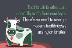 Toothbrush bristles were originally made from cow hairs!
