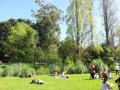 Jardim da Fundação Calouste Gulbenkian in Lisboa, Lisboa