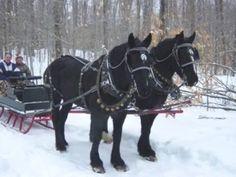 Winter in Vermonts