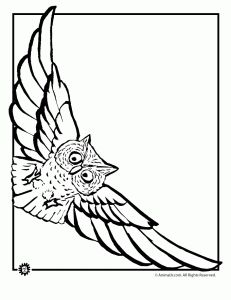 10 Best Stationary Paper Images On Pinterest Coloring Pages