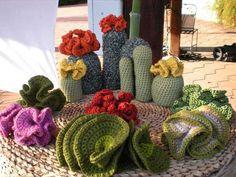 Hyperbolic crochet cactus garden