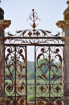 This wrought iron artist knew how to combine just the right amount of three  dimensional acanthus leaves, scroll work and thiner more delicate iron.  This is more about art than iron work. Leo Dowell Interiors