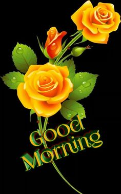 Good Morning Friends Images, Good Morning Flowers Pictures, Good Morning Beautiful Pictures, Good Night Flowers, Good Night Love Images, Good Morning Beautiful Images, Good Morning Cards, Good Morning My Friend, Good Morning Gif