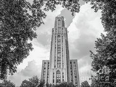 University of Pittsb