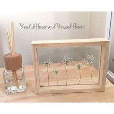 女性で、3LDKの花あそび♪♪/RURULOVEちゃんへ❤/ドライフラワー/ハンドメイド/レースフラワー…などについてのインテリア実例を紹介。「RURULOVEちゃんとemiちゃんが教えてくれたリードディフューザーを手作りしてみました✧‧˚ 玄関がラベンダーの香りに包まれています✩°。 素敵なものを教えてくれてありがとう❤ ダイソーで買ったガラスのフォトフレームにレースフラワーの押し花をはさんで飾っています❤」(この写真は 2017-02-01 16:15:53 に共有されました)