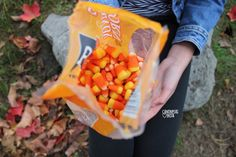 munching on candy corn while a chilly breeze gently blows against you Holidays Halloween, Happy Halloween, Halloween Decorations, Halloween Treats, Fall Season, Tis The Season, Favorite Holiday, Holiday Fun, Autumn Aesthetic