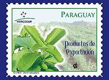 Stevia – Wikipedia