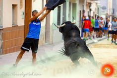 torodigital: Con un toro de Luís Algarra  arrancan las fiestas...