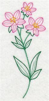 Embroidery Library - Machine Embroidery Designs Inspired Project Page Floral Embroidery Patterns, Hand Embroidery Flowers, Learn Embroidery, Embroidery For Beginners, Vintage Embroidery, Embroidery Applique, Machine Embroidery Designs, Embroidery Stitches, Lazy Daisy Stitch