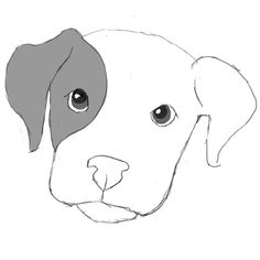 how to draw a dog | Attention to Detail