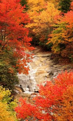 Waterfall, Blue Ridge Parkway, North Carolina