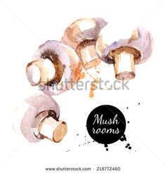 Mushrooms. Hand drawn watercolor painting on white background. Vector illustration - stock vector