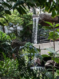 Foellinger-Freimann Botanical Conservatory, Fort Wayne, Indiana