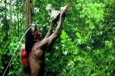 Pameran Tentang Kehidupan Suku Mentawai Hadir Di Museum Belanda