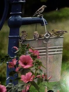 This is an awesome idea for a bird bath. You could put something in the bottom to make the water shallower. I wonder where you would find an old water pump?