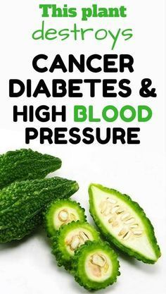 Among the cancer fighting foods ,diabetes diet foods and high pressure remedies, Goya is the best. This plant destroys cancer, diabetes and high blood pressure.