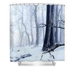 Magical misty winter moment in forest. Beautiful Winter Scenes, Beautiful Images, Shower Curtain Rings, Shower Curtains, Snowy Trees, Curtains For Sale, Winter Photography, Winter Landscape, Great Pictures