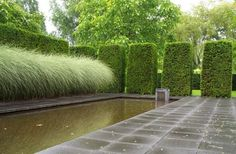 mien ruys gardens | pool ~ mien ruys