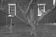 George Tice, Tree, Swings and Windows, Lancaster, Pennsylvania, 1964
