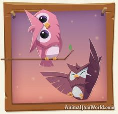 Like every other new animal, the owls are available for purchase at the Diamond Shop for the price of 10 diamonds. Description from animaljamworld.com. I searched for this on bing.com/images