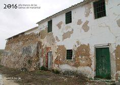 Cortijo y Salero de la Salina de Cuesta Paloma (Baena, Córdoba)