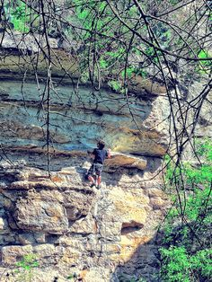 Climbing to the Top. Barton Springs Greenbelt in Austin.