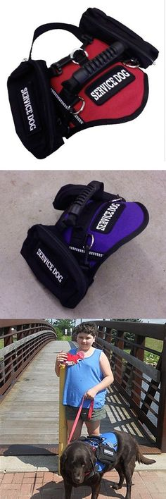 Service Dog Harness Vest with Saddlebags http://www.spartadog.com/products/service-dog-harness-vest-wtih-saddlebags